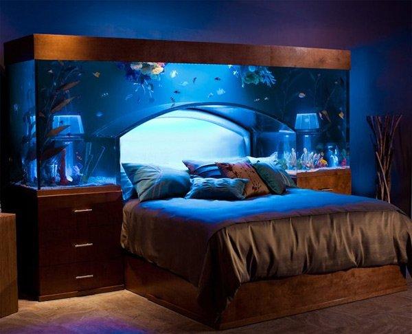 aquarium tête de lit
